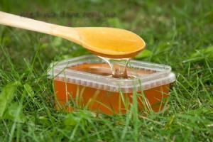 Разнотравье (травяной мед)